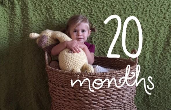 20 months
