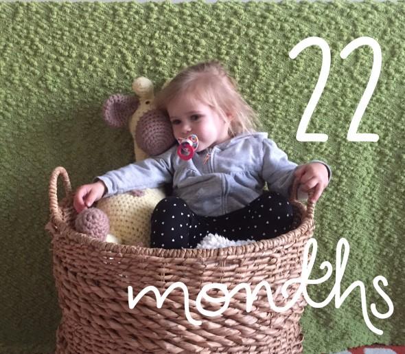 22 months